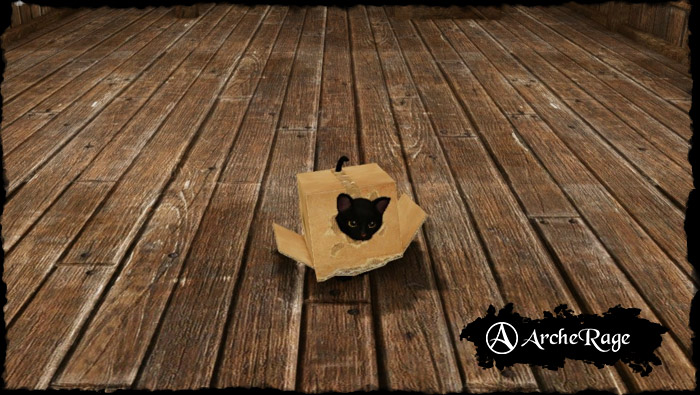 black_box_housepet.1536096220.jpg