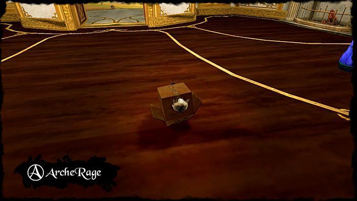 box_cat.1533063154.jpg