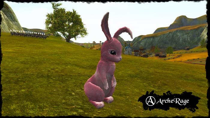 coral_rabbit.1537916477.jpg