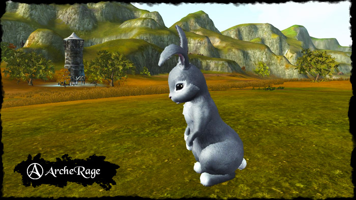 gray_rabbit.1537916459.jpg
