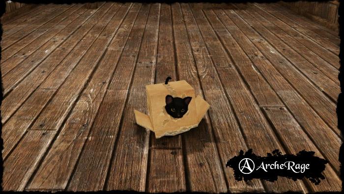 Inbox Black Cat Housepet.jpg