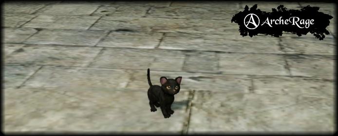 Крохотный черный котенок.PNG