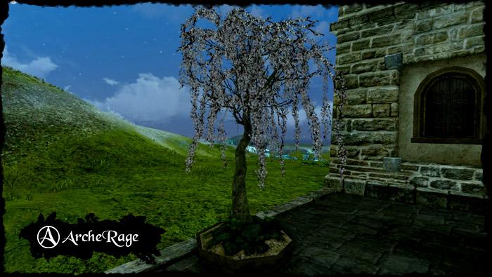 Large Everbloom Cherry Tree.jpg