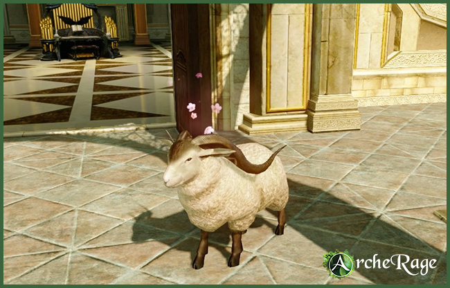 Lil' Sheepi.jpg