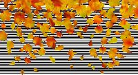 353d8c8feb94.png