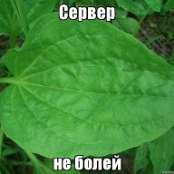 Михаил_первый